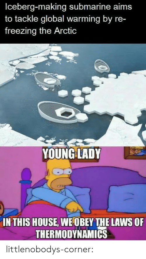 In This House: Iceberg-making submarine aims  to tackle global warming by re-  freezing the Arctic  YOUNG LADY  IN THIS HOUSE, WE OBEY THE LAWS OF  THERMODYNAMICS littlenobodys-corner: