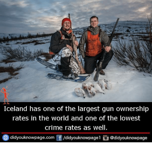 Criming: Iceland has one of the largest gun ownership  rates in the world and one of the lowest  crime rates as well  didyouknowpage.com囝/didyouknowpagel ǔ @didyouknowpage