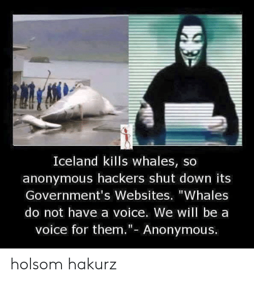 """websites: Iceland kills whales, so  anonymous hackers shut down its  Government's Websites. """"Whales  do not have a voice. We will be a  voice for them.""""- Anonymous. holsom hakurz"""