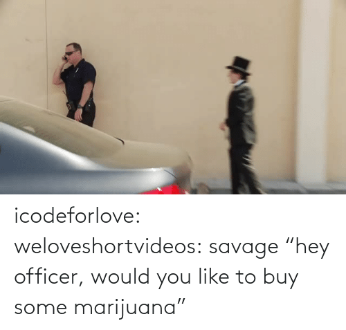 "Savage: icodeforlove: weloveshortvideos:  savage  ""hey officer, would you like to buy some marijuana"""