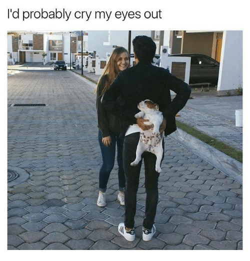Relationships, Cry, and Eyes: I'd probably cry my eyes out