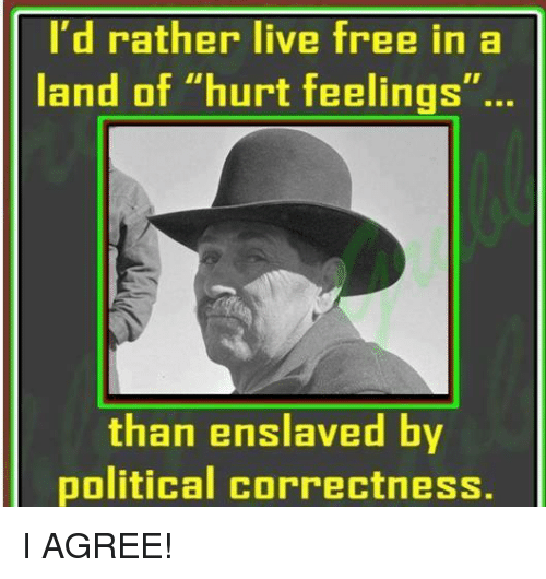 """Free, Live, and Political Correctness: I'd rather live free in a  land of """"hurt feelings""""  than enslaved by  political correctness. I AGREE!"""