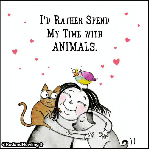 """Animals, Memes, and Time: I'D RATHER SPEND  MY TIME wITH  ANIMALS  """""""