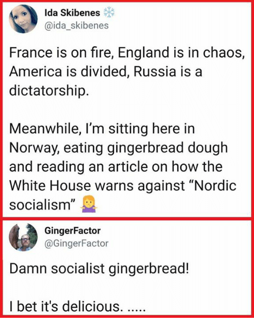 "gingerbread: Ida Skibenes  @ida_skibenes  France is on fire, England is in chaos,  America is divided, Russia is a  dictatorship.  Meanwhile, l'm sitting here in  Norway, eating gingerbread dough  and reading an article on how the  White House warns against ""Nordic  socialism""  GingerFactor  @GingerFactor  Damn socialist gingerbread!  I bet it's delicious."