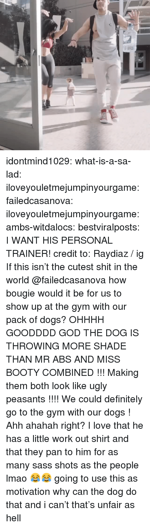 Ohhhh: idontmind1029: what-is-a-sa-lad:  iloveyouletmejumpinyourgame:  failedcasanova:  iloveyouletmejumpinyourgame:   ambs-witdalocs:   bestviralposts:  I WANT HIS PERSONAL TRAINER! credit to: Raydiaz / ig   If this isn't the cutest shit in the world    @failedcasanova how bougie would it be for us to show up at the gym with our pack of dogs?    OHHHH GOODDDD GOD THE DOG IS THROWING MORE SHADE THAN MR ABS AND MISS BOOTY COMBINED !!! Making them both look like ugly peasants !!!! We could definitely go to the gym with our dogs !   Ahh ahahah right? I love that he has a little work out shirt and that they pan to him for as many sass shots as the people lmao 😂😂  going to use this as motivation   why can the dog do that and i can't that's unfair as hell