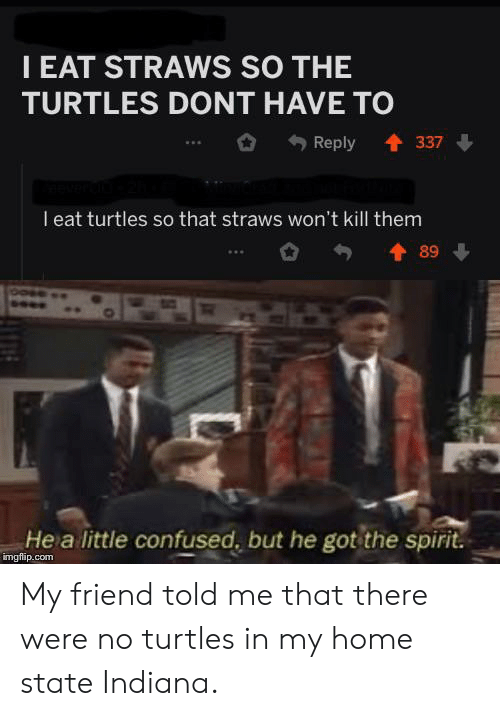Confused, Home, and Indiana: IEAT STRAWS SO THE  TURTLES DONT HAVE TO  t337  Reply  l eat turtles so that straws won't kill them  89  He a little confused, but he got the spirit.  imgflip.com My friend told me that there were no turtles in my home state Indiana.