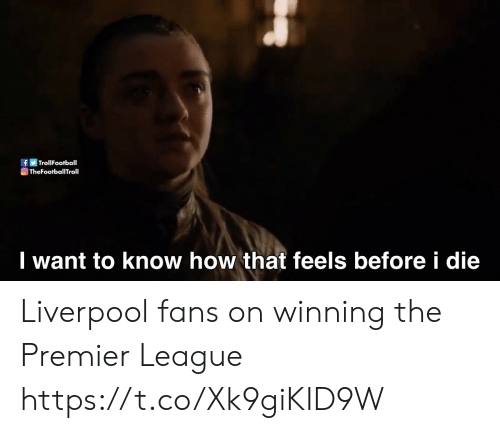 Football, Memes, and Premier League: If丽Trol!Football  TheFootballTroll  I want to know how that feels before i die Liverpool fans on winning the Premier League https://t.co/Xk9giKID9W