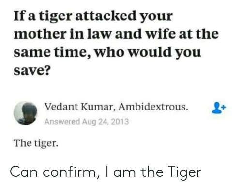 Tiger, Time, and Wife: If a tiger attacked your  mother in law and wife at the  same time, who would you  save?  Vedant Kumar, Ambidextrous.  Answered Aug 24, 2013  The tiger Can confirm, I am the Tiger