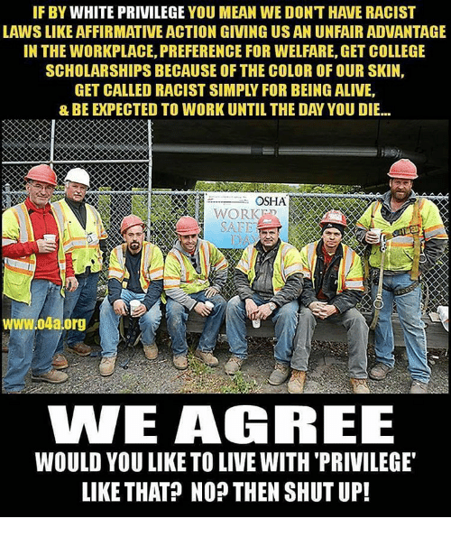 Affirmative: IF BY WHITE PRIVILEGE YOU MEAN WE DONT HAVE RACIST  LAWSLIKE AFFIRMATIVE ACTION GIVING US AN UNFAIRADVANTAGE  IN THE WORKPLACE, PREFERENCE FOR WELFARE, GET COLLEGE  SCHOLARSHIPS BECAUSE OF THE COLOR OFOUR SKIN,  OSHA  WORK  W.04a.org  WE AGREE  WOULD YOU LIKE TO LIVEWITH PRIVILEGE  LIKE THAT? NO THEN SHUT UP!