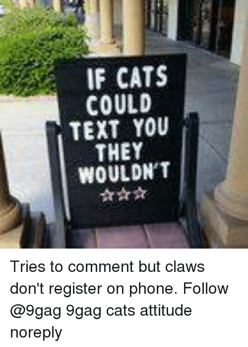 9gag, Cats, and Memes: IF CATS  COULD  TEXT YOU  THEY  WOULDN'1T Tries to comment but claws don't register on phone. Follow @9gag 9gag cats attitude noreply
