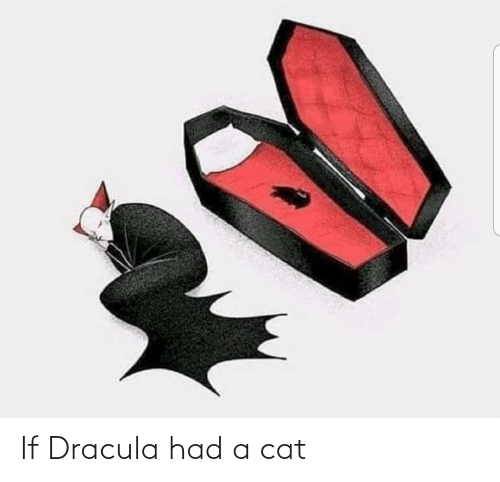 Dracula: If Dracula had a cat