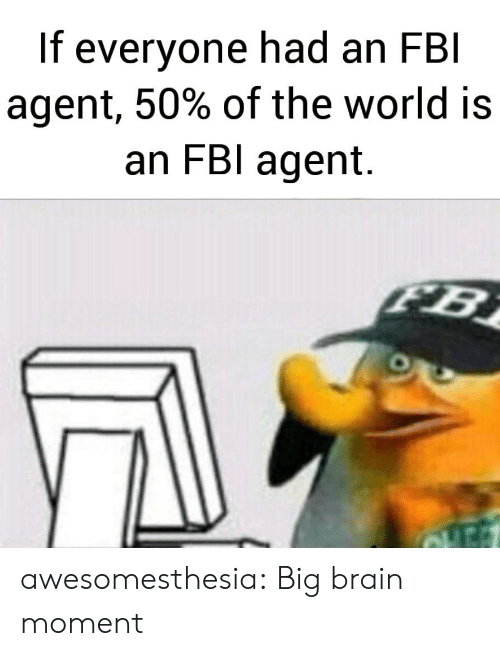 Fbi, Tumblr, and Blog: If everyone had an FBI  agent, 50% of the world is  an FBI agent.  FB awesomesthesia:  Big brain moment