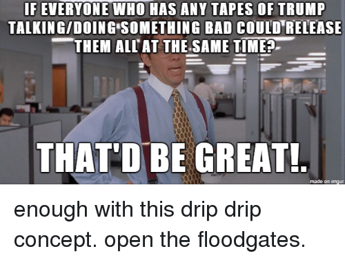 Thatd Be Great: IF EVERYONE WHO HAS ANY TAPES OF TRUMP  TALKING/DOING SOMETHING BAD COULD RELEASE  -THEM ALIAT THESAME TIME  THAT'D BE GREAT  made on imgur enough with this drip drip concept. open the floodgates.