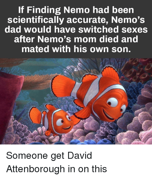 If Finding Nemo Had Been Scientifically Accurate Nemo's Dad Would