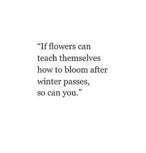 """Winter, Flowers, and How To: """"If flowers can  teach themselves  how to bloom after  winter passes,  so can you.  95"""