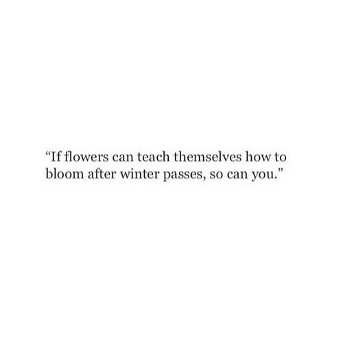 """Winter, Flowers, and How To: """"If flowers can teach themselves how to  bloom after winter passes, so can you."""