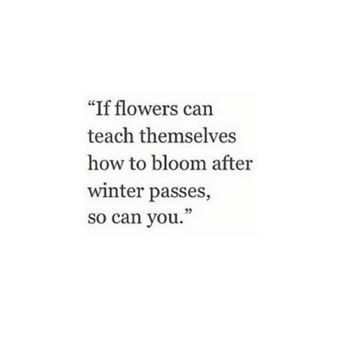 "Winter, Flowers, and How To: ""If flowers can  teach themselves  how to bloom after  winter passes,  so can you.  95"