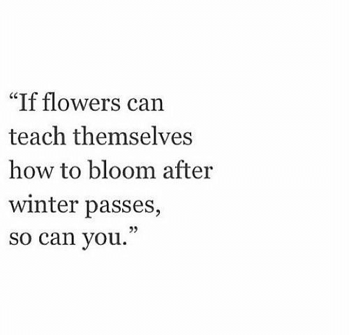 "bloom: ""If flowers can  teach themselves  how to bloom after  winter passes,  so can you."""