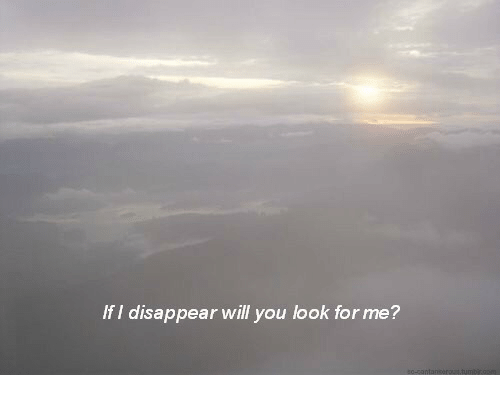 Will, You, and For: If I disappear will you look for me