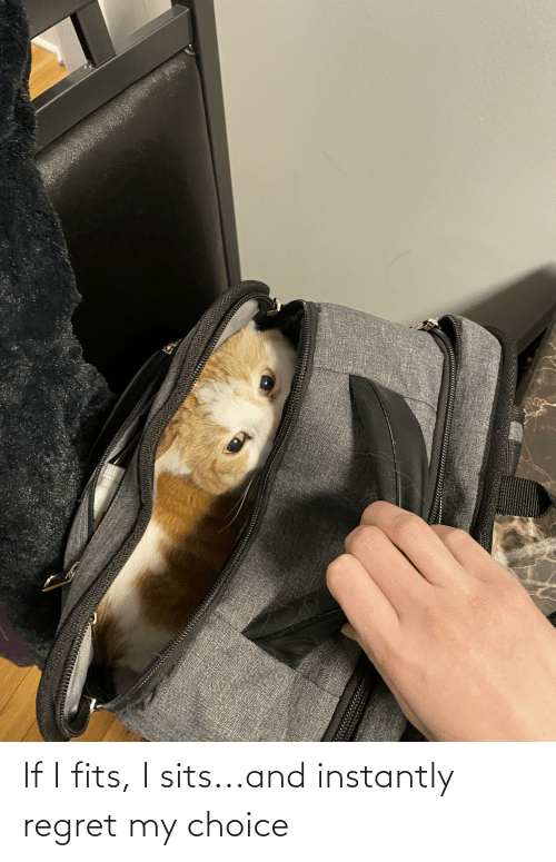 Instantly: If I fits, I sits...and instantly regret my choice