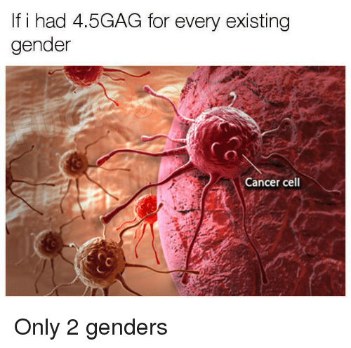 Only 2 Genders: If i had 4.5GAG for every existing  gender  Cancer cell <p>Only 2 genders</p>