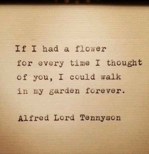 Flower, Forever, and Time: If I had a flower  for every time I thought  of you, I could walk  in my garden forever  lfred Lord Tennysorn
