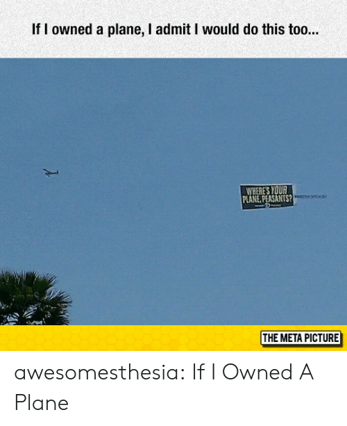 Tumblr, Blog, and Com: If I owned a plane, I admit I would do this too...  WHERE'S YOUR  LANE, PEASANTS?  THE META PICTURE awesomesthesia:  If I Owned A Plane