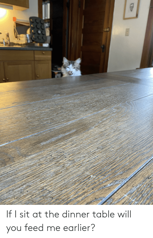 feed me: If I sit at the dinner table will you feed me earlier?