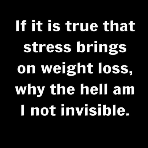 Memes, True, and Hell: If it is true that  stress brings  on weight loss,  why the hell am  I not invisible.
