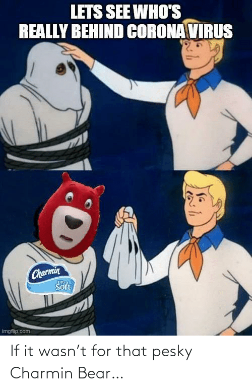 Bear: If it wasn't for that pesky Charmin Bear…