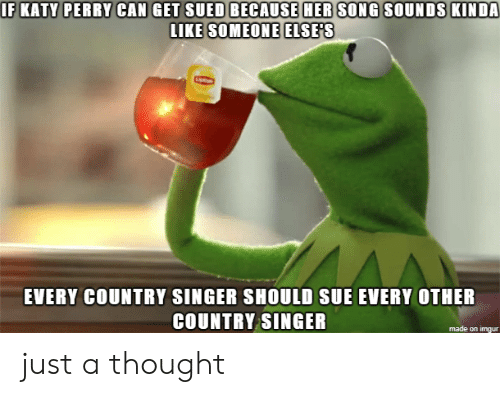 Sued: IF KATY PERRY CAN GET SUED BECAUSE HER SONG SOUNDS KINDA  LIKE SOMEONE ELSE'S  EVERY COUNTRY SINGER SHOULD SUE EVERY OTHER  COUNTRY SINGER  made on imgur just a thought