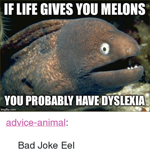 """Dyslexia: IF LIFE GIVES YOU MELONS  YOU PROBABLY HAVE DYSLEXIA  imgflip.com <p><a href=""""http://advice-animal.tumblr.com/post/171039751623/bad-joke-eel"""" class=""""tumblr_blog"""">advice-animal</a>:</p>  <blockquote><p>Bad Joke Eel</p></blockquote>"""