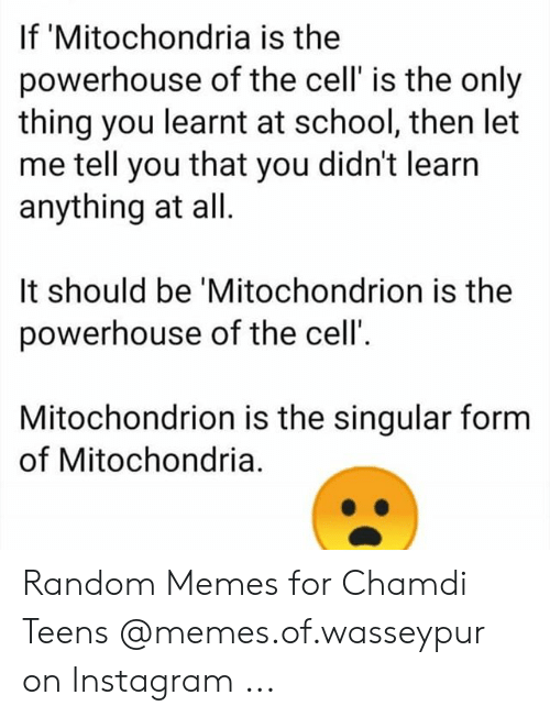 Mitochondria Is The Powerhouse Of The Cell Meme