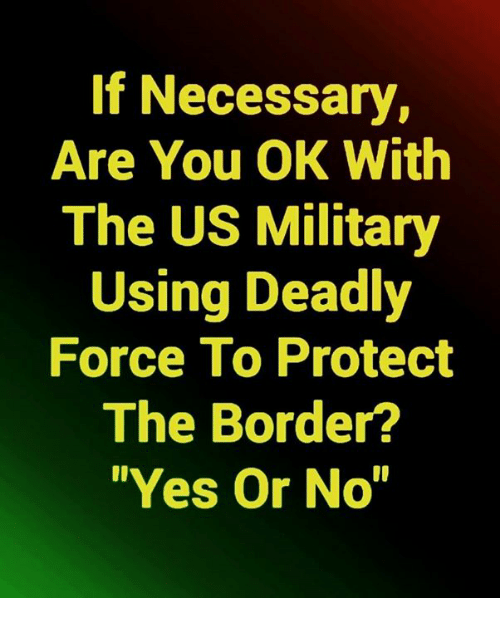 """Memes, Military, and 🤖: If Necessary,  Are You OK With  The US Military  Using Deadly  Force To Protect  The Border?  """"Yes Or No"""""""