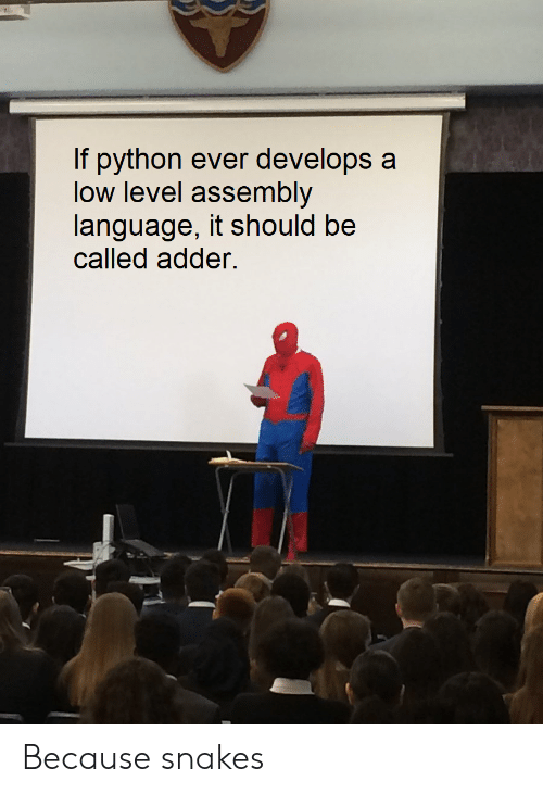 Snakes: If python ever develops a  low level assembly  language, it should be  called adder. Because snakes