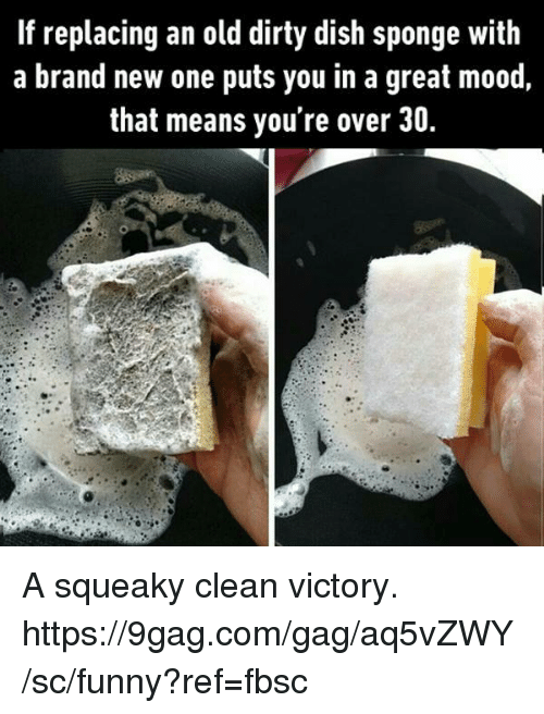 9gag, Dank, and Funny: If replacing an old dirty dish sponge with  a brand new one puts you in a great mood,  that means you're over 30. A squeaky clean victory. https://9gag.com/gag/aq5vZWY/sc/funny?ref=fbsc