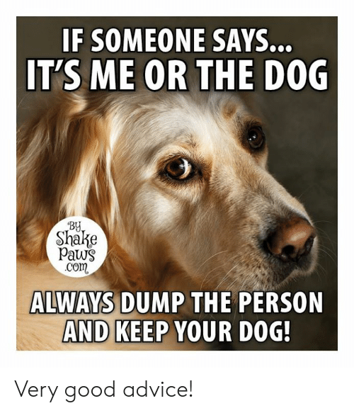 Paws: IF SOMEONE  IT'S ME OR THE D0G  SAYS..  BY  Shake  paws  com  ALWAYS DUMP THE PERSON  AND KEEP YOUR DOG Very good advice!