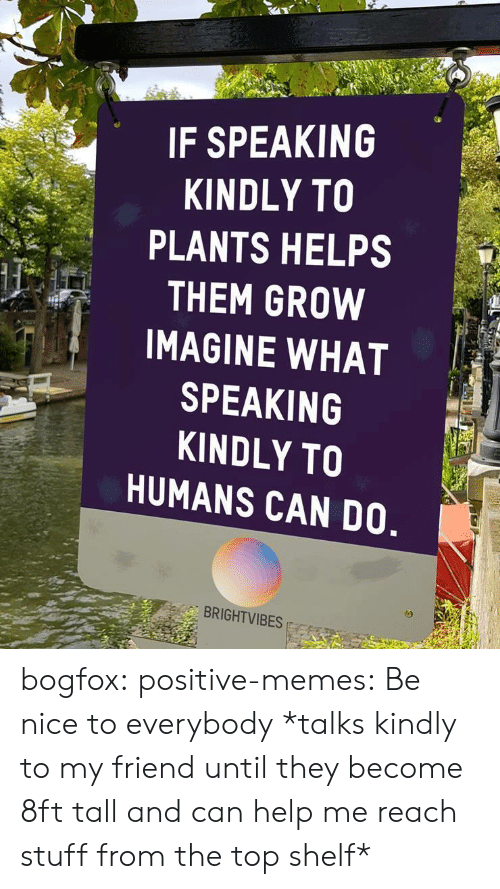Memes, Target, and Tumblr: IF SPEAKING  KINDLY TO  PLANTS HELPS  THEM GROW  IMAGINE WHAT  SPEAKING  KINDLY TO  HUMANS CAN DO  BRIGHTVIBES bogfox: positive-memes: Be nice to everybody *talks kindly to my friend until they become 8ft tall and can help me reach stuff from the top shelf*