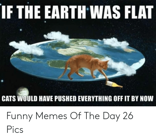 Cats, Funny, and Memes: IF THE EARTH WAS FLAT  CATS WOULD HAVE PUSHED EVERYTHING OFF IT BY NOW Funny Memes Of The Day 26 Pics