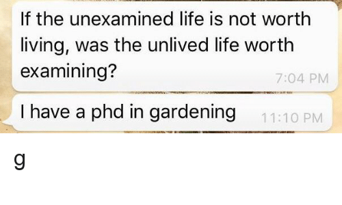 Life, Living, and Phd: If the unexamined life is not worth  living, was the unlived life worth  examining?  7:04 PM  I have a phd in gardening  11:10 PM