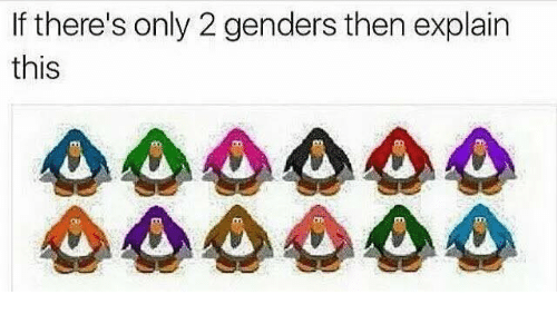 Only 2 Genders: If there's only 2 genders then explain  this