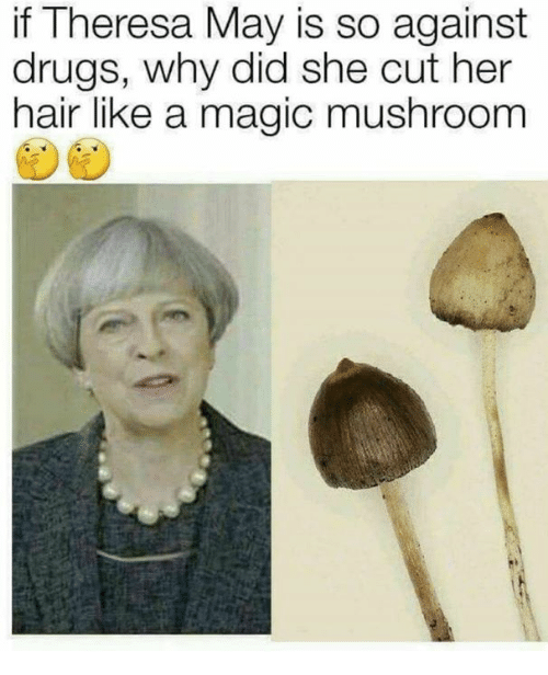 Drugs, Memes, and Hair: if Theresa May is so against  drugs, why did she cut her  hair like a magic mushroom
