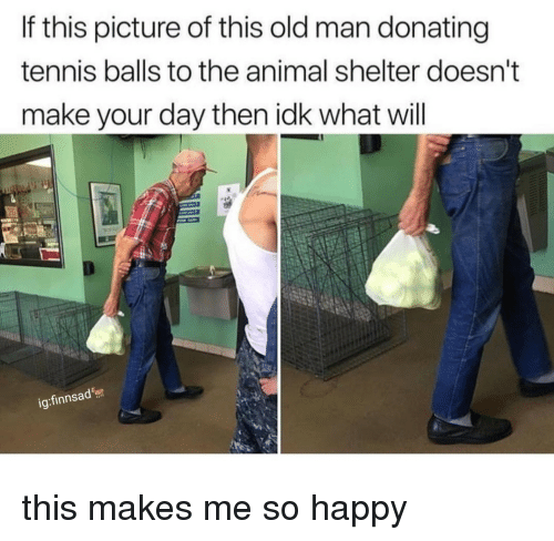 Old Man, Animal, and Animal Shelter: If this picture of this old man donating  tennis balls to the animal shelter doesn'  make your day then idk what will  ig:finnsad this makes me so happy