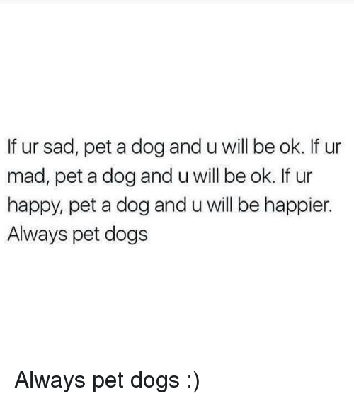 Dogs, Happy, and Mad: If ur sad, pet a dog and u will be ok. If ur  mad, pet a dog and u will be ok. If ur  happy, pet a dog and u will be happier.  Always pet dogs Always pet dogs :)