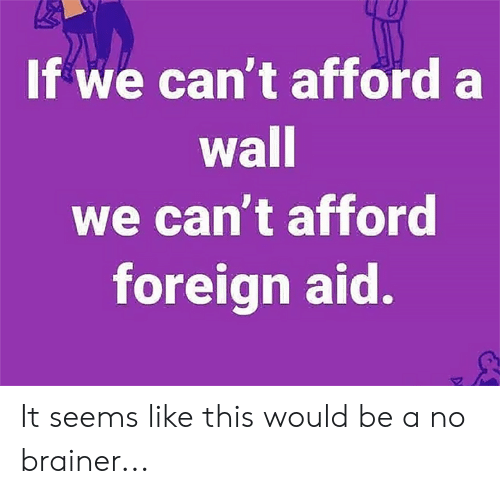 Memes, 🤖, and This: If we can't afford a  wall  we can't afford  foreign aid. It seems like this would be a no brainer...