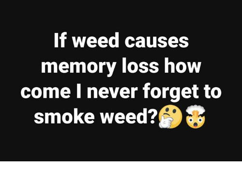 Smoke Weed: If weed causes  memory loss how  come I never forget to  smoke weed?