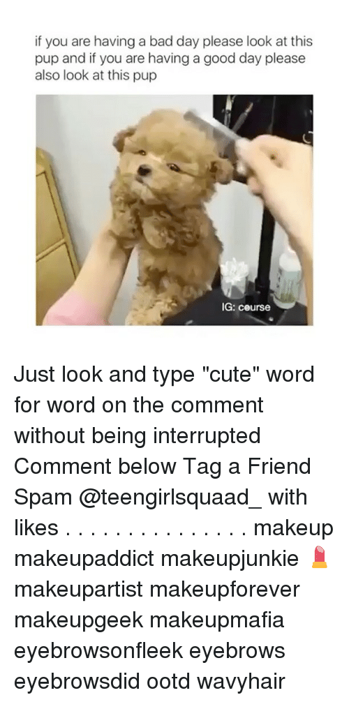 "Bad Day, Memes, and 🤖: if you are having a bad day please look at this  pup and if you are having a good day please  also look at this pup  IG: course Just look and type ""cute"" word for word on the comment without being interrupted Comment below Tag a Friend Spam @teengirlsquaad_ with likes . . . . . . . . . . . . . . . makeup makeupaddict makeupjunkie 💄 makeupartist makeupforever makeupgeek makeupmafia eyebrowsonfleek eyebrows eyebrowsdid ootd wavyhair"