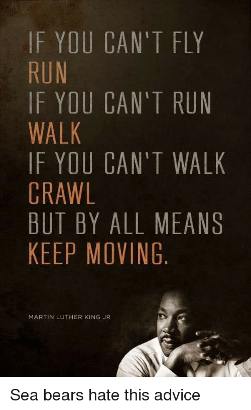 Advice, Martin, and Martin Luther King Jr.: IF YOU CAN'T FLY  RUN  IF YOU CAN'T RUN  WALK  IF YOU CAN'T WALK  CRAWL  BUT BY ALL MEANS  KEEP MOVING  MARTIN LUTHER KING JR