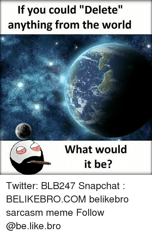 "Be Like, Meme, and Memes: If you could ""Delete""  anything from the world  What would  it be? Twitter: BLB247 Snapchat : BELIKEBRO.COM belikebro sarcasm meme Follow @be.like.bro"