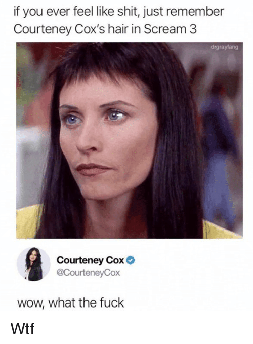 Dank, Scream, and Shit: if you ever feel like shit, just remember  Courteney Cox's hair in Scream 3  drgraylang  Courteney Cox  @CourteneyCox  wow, what the fuck Wtf